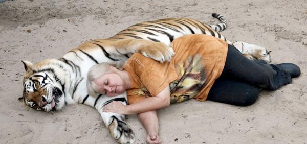 perierga.gr - Γυναίκα έχει στον κήπο της 2 τίγρεις της Βεγγάλης!