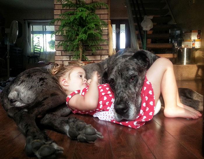 perierga.gr - Μωράκια ποζάρουν μαζί με τα πολύ… μεγάλα σκυλιά τους!