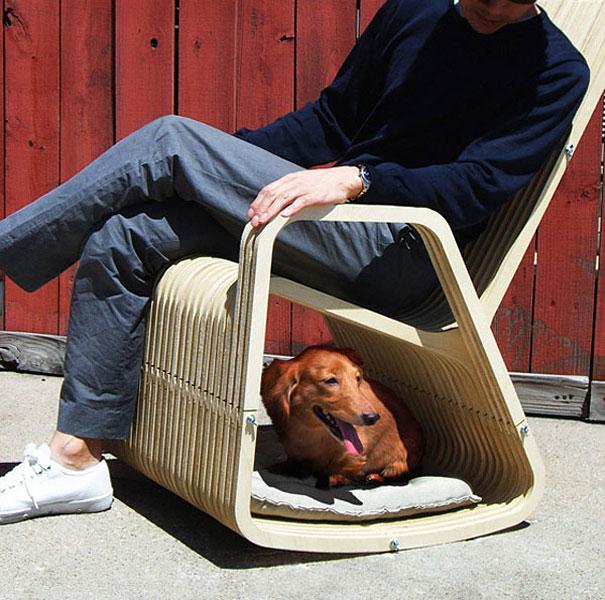 perierga.gr - Έξυπνα δώρα για το σκύλο σας!