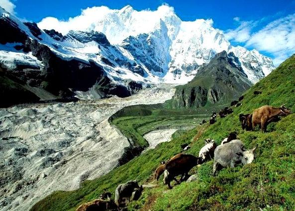 Perierga.gr - Πώς καταφέρνουν να επιβιώνουν με ελάχιστο οξυγόνο στο Θιβέτ