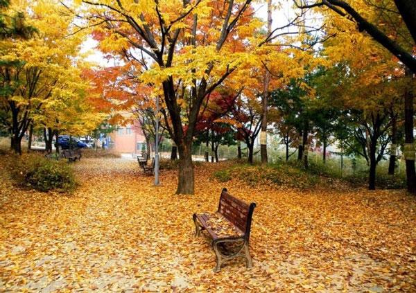 Perierga.gr - Πανέμορφες φθινοπωρινές εικόνες