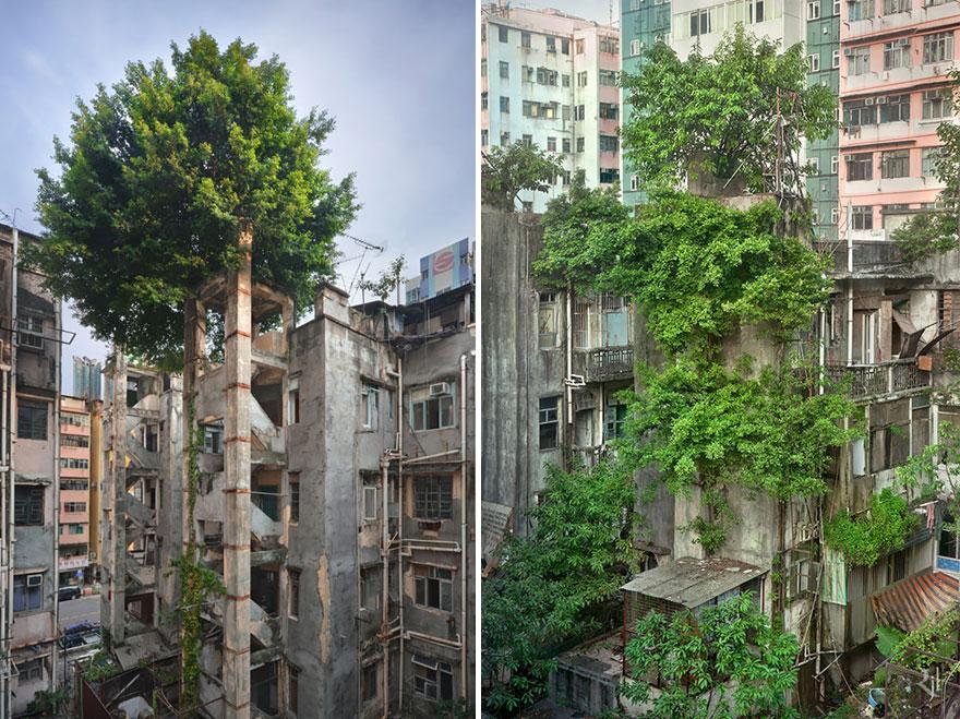 perierga.gr - Εκεί που η φύση νίκησε την οικιστική ανάπτυξη!