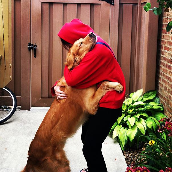 perierga.gr - Σκυλιά αγκαλιάζουν τους ιδιοκτήτες τους!