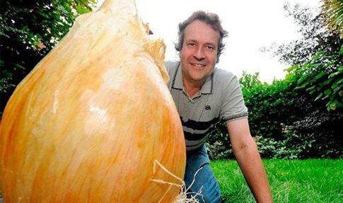 perierga.gr - Το μεγαλύτερο κρεμμύδι στον κόσμο!