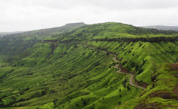 perierga.gr - Όλες οι αποχρώσεις του πράσινου σε ένα βουνό!