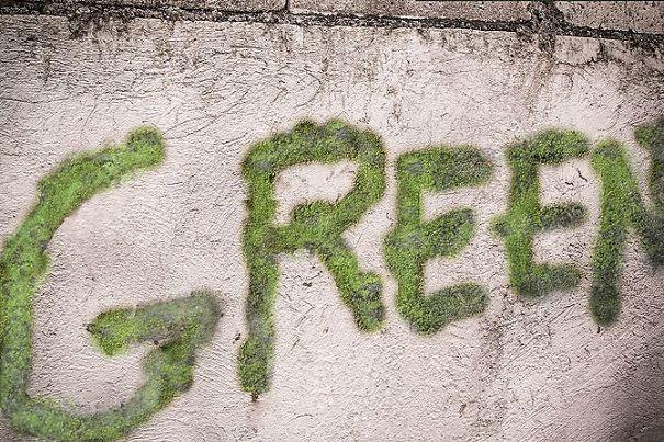 perierga.gr - Γκράφιτι με βρύα στους τοίχους!