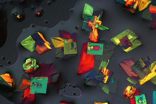 perierga.gr - Εικόνες... στο μικροσκόπιο εντυπωσιάζουν!
