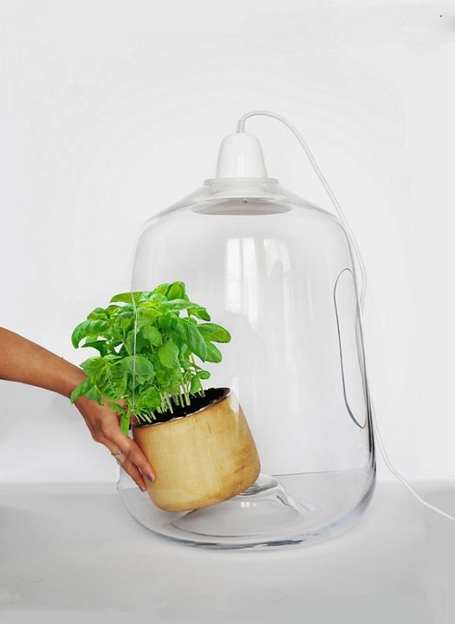 perierga.gr - Μίνι θερμοκήπιο για φυτά!