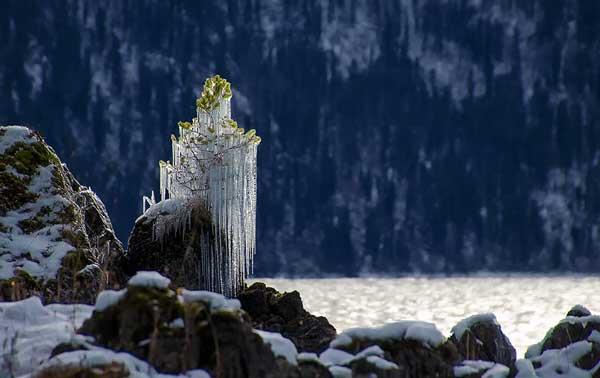 perierga.gr - Όταν η φύση παγώνει είναι εκπληκτική!