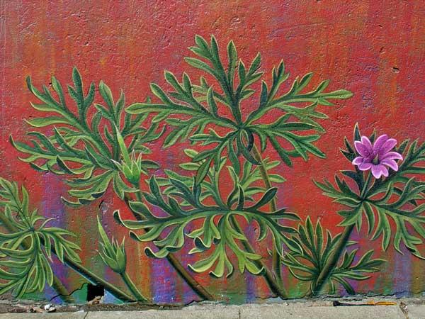 perierga.gr - Η πρόοδος των τοιχογραφιών σε ένα βίντεο!