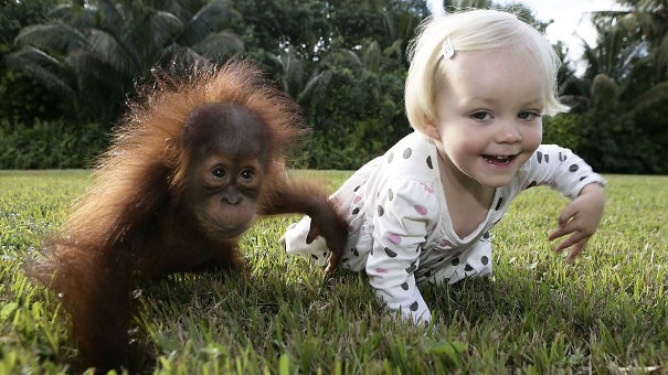 perierga.gr - Παιδιά μιμούνται τα... ζώα!