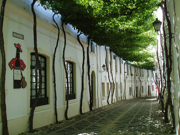 perierga.gr - Ανθισμένοι δρόμοι & σοκάκια χάρμα οφθαλμών!