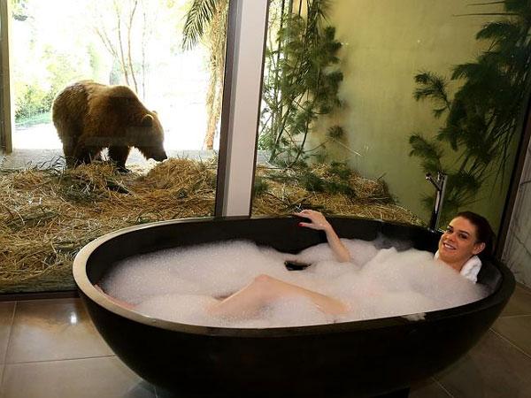 "perierga.gr - ""Jamala Wildlife Lodge"": Το πιο ""άγριο"" ξενοδοχείο!"