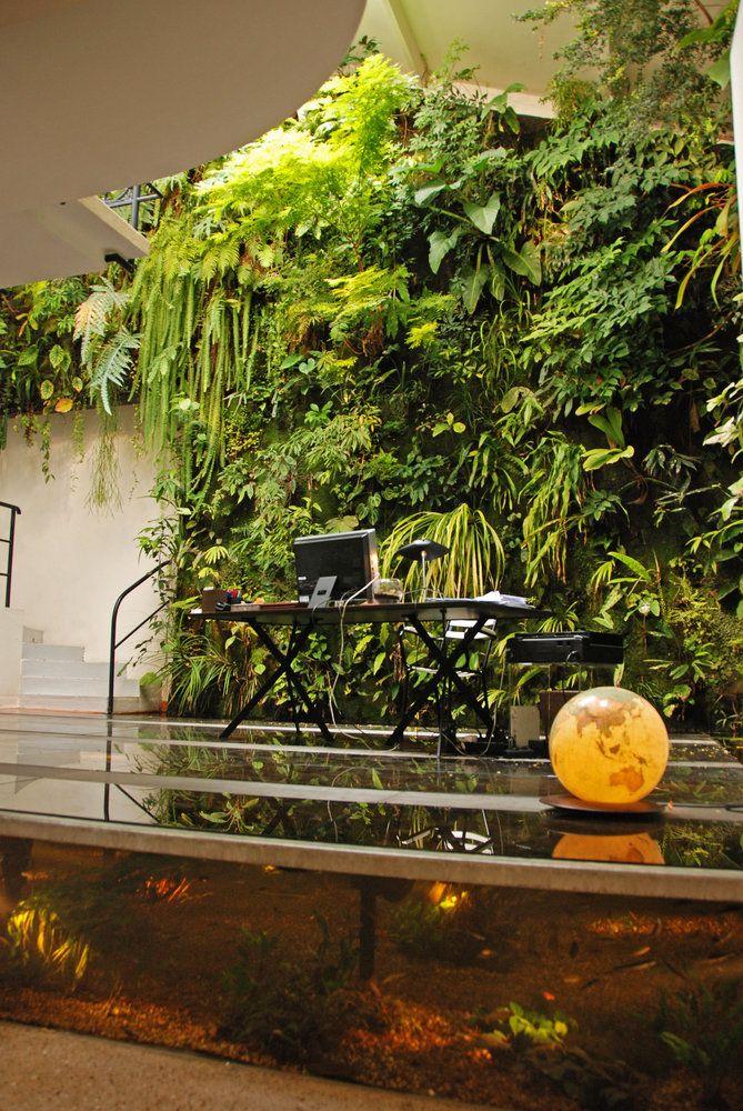 perierga.gr - Δημιούργησε μια... ζούγκλα στο σπίτι του!