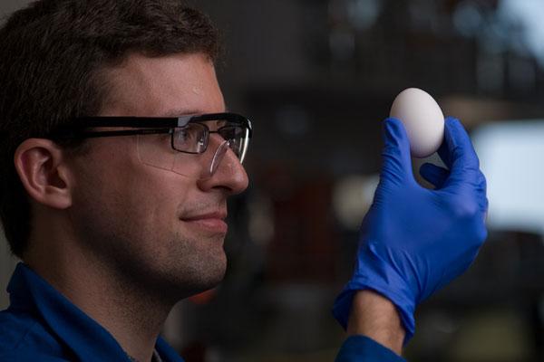 perierga.gr - Επιστήμονες κατάφεραν να ξε... βράσουν βραστά αυγά!