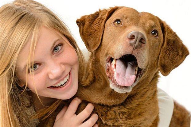 perierga.gr - Οι σκύλοι διακρίνουν τη χαρά και τη λύπη των ανθρώπων