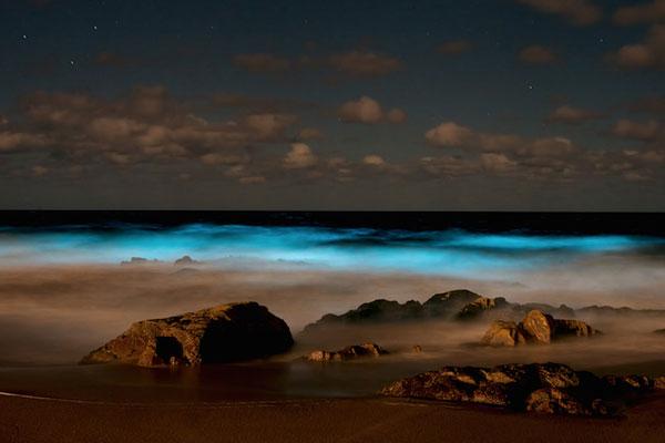 "perierga.gr - Η θάλασσα ""φωσφορίζει"" στην Ουρουγουάη!"