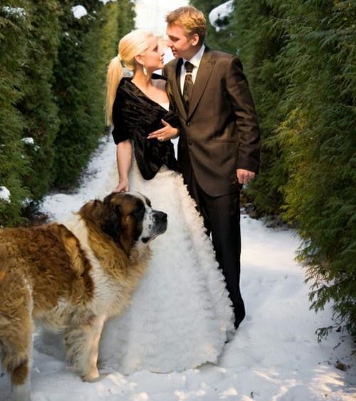 perierga.gr - Σκυλιά σε γαμήλιες φωτογραφίες!