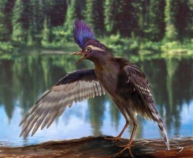 perierga.gr - Ο αρχαιότερος συγγενής των πτηνών
