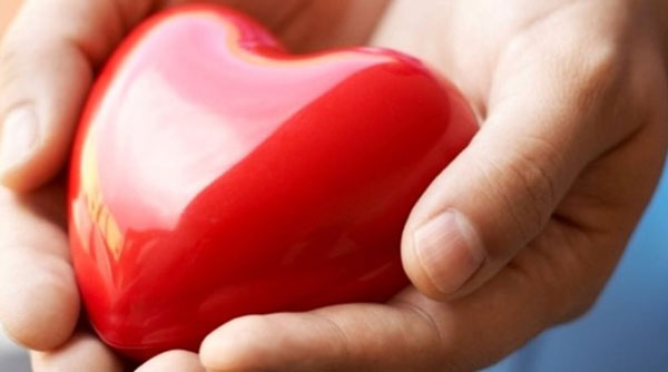 perierga.gr - Δυνατή χειραψία σημαίνει δυνατή καρδιά!