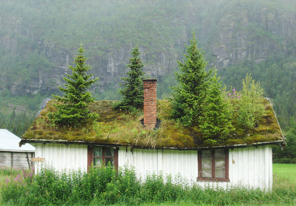 perierga.gr - Η αρχιτεκτονική της νορβηγικής υπαίθρου ξεπήδησε από παραμύθι!