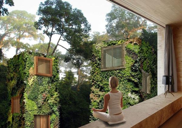 perierga.gr - Oasis: Ζώντας στα δέντρα!