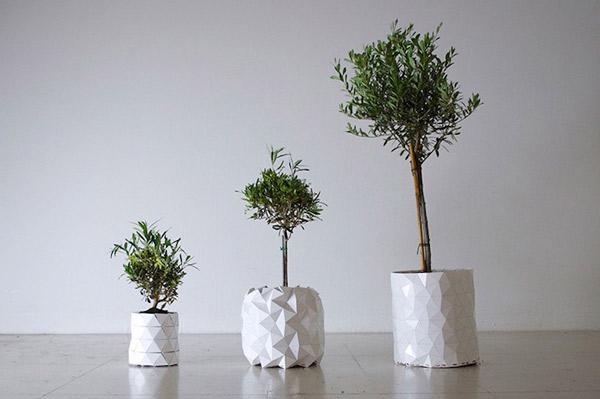 Perierga.gr - Γλάστρα... μεγαλώνει μαζί με το φυτό!