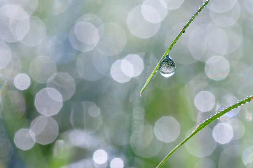perierga.gr - Απίστευτη τέχνη με σταγόνες βροχής!