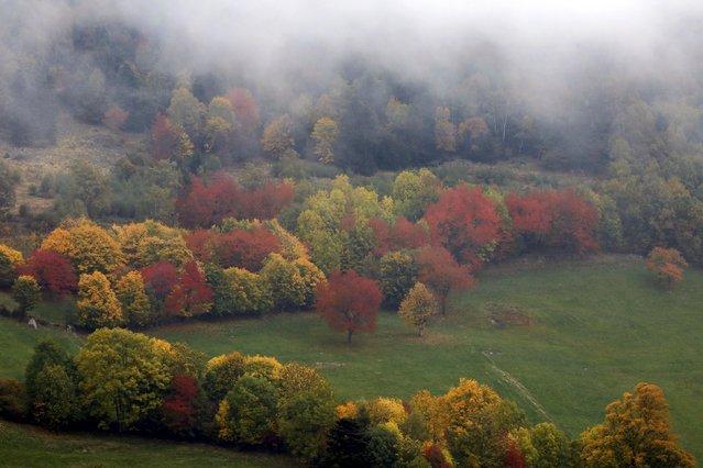 perierga.gr - Φθινοπωρινά χρώματα στη Γαλλία!