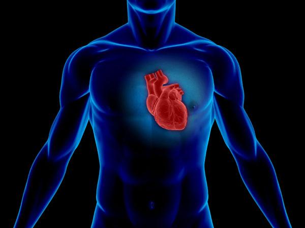 perierga.gr - Ποια επαγγέλματα βλάπτουν σοβαρά την υγεία της καρδιάς