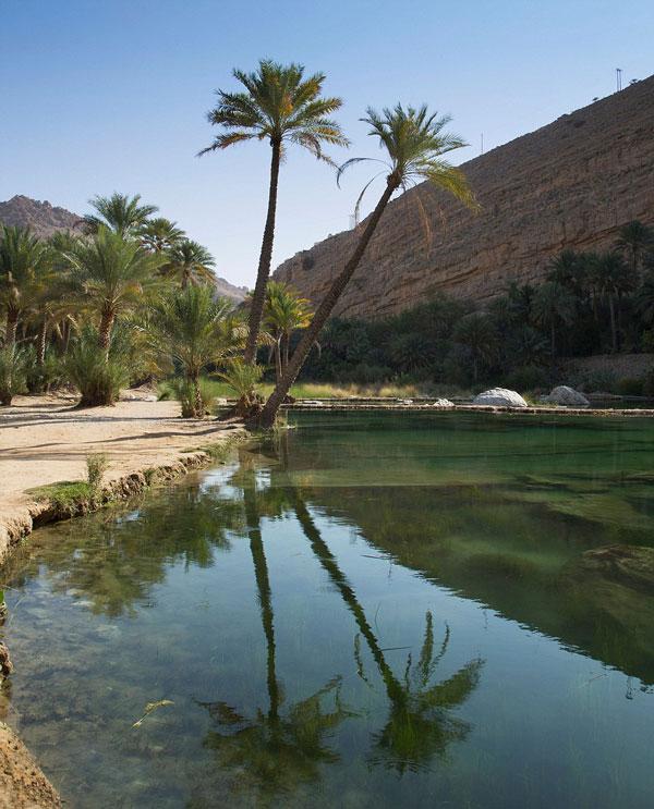perierga.gr - H ζούγκλα της Αραβίας που πρασινίζει 3 μήνες τον χρόνο!