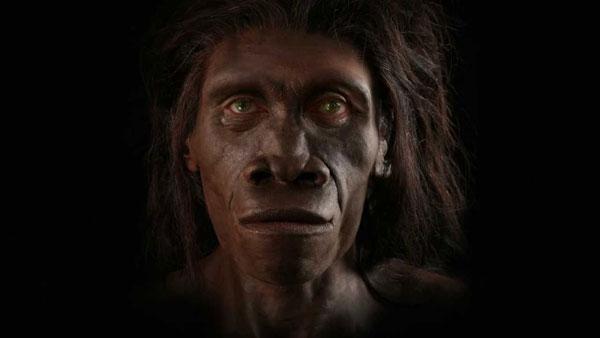 perierga.gr - Η εξέλιξη του ανθρώπου σε 1 λεπτό!
