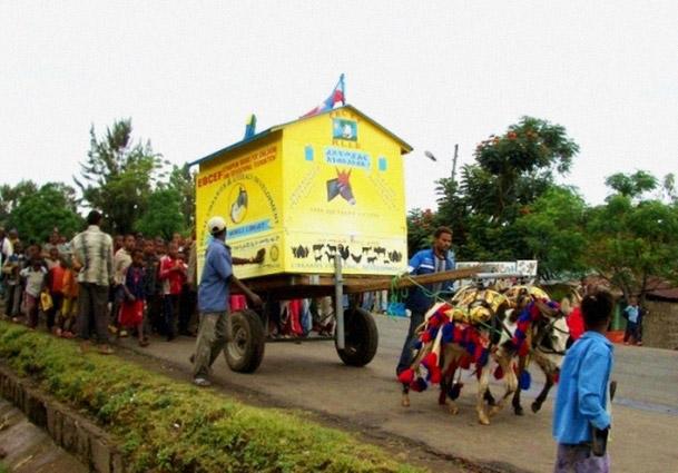 perierga.gr - Οι κινητές βιβλιοθήκες της Αιθιοπίας με αλογάκια!
