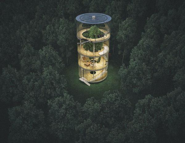 perierga.gr - Γυάλινο σπίτι... αναπτύσσεται γύρω από ένα δέντρο!