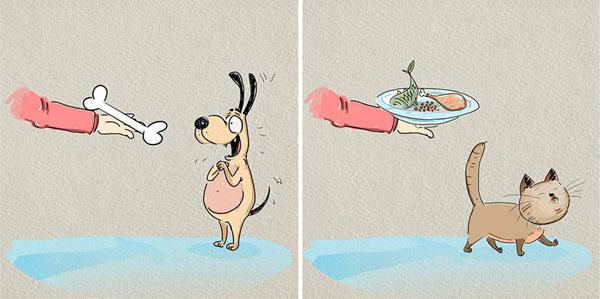 perierga.gr - Γάτες VS Σκύλων