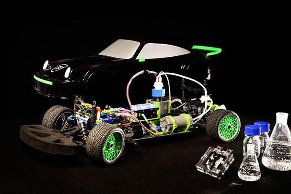 perierga.gr - Αυτοκίνητο κινείται με το μυρμηκικό οξύ των εντόμων!