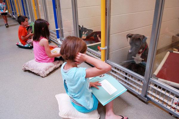 perierga.gr - Παιδιά μαθαίνουν ανάγνωση διαβάζοντας στα αδέσποτα!