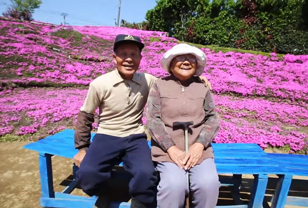 perierga.gr - Σύζυγος φύτεψε για την τυφλή γυναίκα του χιλιάδες λουλούδια για να τα μυρίζει!