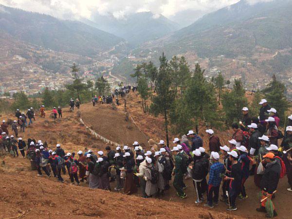 perierga.gr - Η γέννηση του διαδόχου στο Μπουτάν γιορτάστηκε με τη φύτευση 100.000 δέντρων!