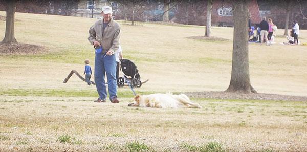 perierga.gr - Σκύλος... κάνει τον πεθαμένο για να μείνει στο πάρκο!