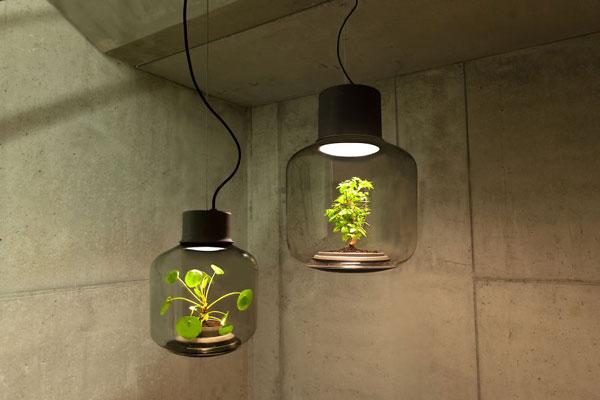 perierga.gr - Φυτά σε λάμπες μεγαλώνουν σε κλειστούς χώρους!