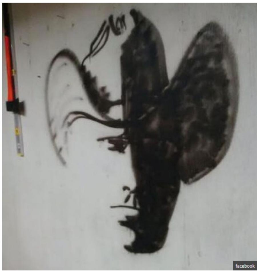 perierga.gr - Γιατί κανείς δεν μπορεί να βρει τι δείχνει αυτή η ζωγραφιά;