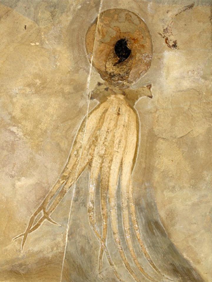 perierga.gr - Χταπόδι ζωγραφισμένο από 95 εκ. ετών μελάνι του!