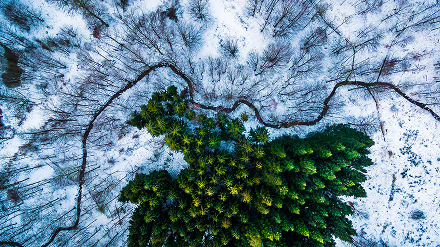 perierga.gr - Νικήτριες φωτογραφίες με drone για το 2016!