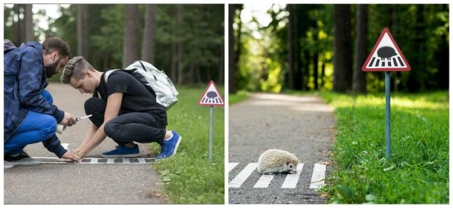 perierga.gr - Ευγενικές... εφευρέσεις ανθρώπων προς τα ζώα!