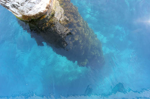 perierga.gr - Κορμός επιπλέει σε λίμνη πάνω από 116 χρόνια!