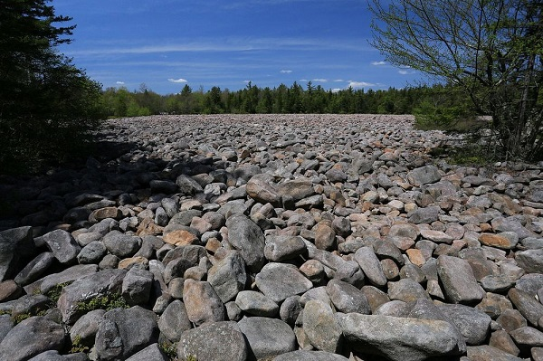 perierga.gr - Το λιβάδι με τις... πέτρες!
