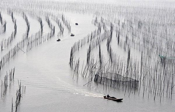 perierga.gr - Το πιο όμορφο ψαροχώρι της Κίνας!