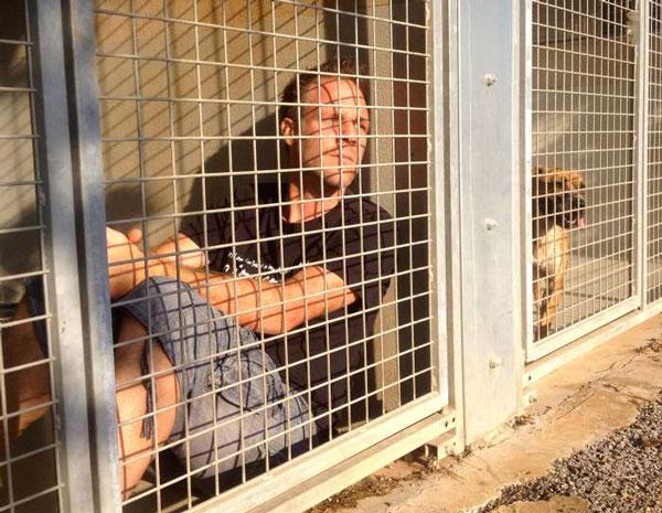 perierga.gr -Ο φαρσέρ Remi Gaillard κλείνετε σε κλουβί για να σώσει 300 αδέσποτα!