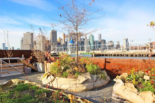 perierga.gr - Πλωτός λαχανόκηπος στη Νέα Υόρκη!